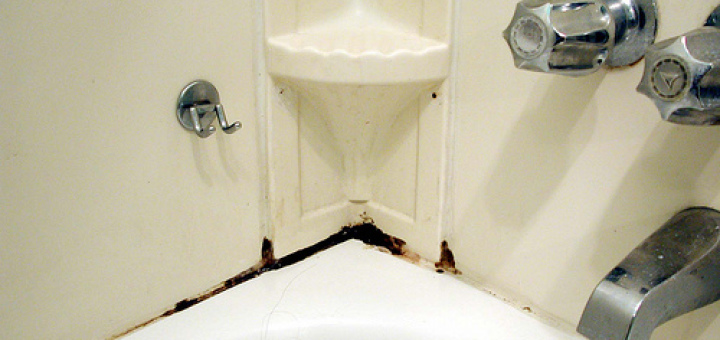 The best way to clean mildew in a bathroom tidychoice blog for Best way to clean bathroom