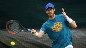 tennis-grand-slam-andy-murray-wimbledon_3491503